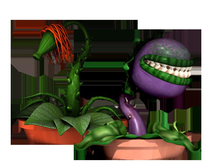 Mrs Greens Plant Emporium Hero Image Inner 1